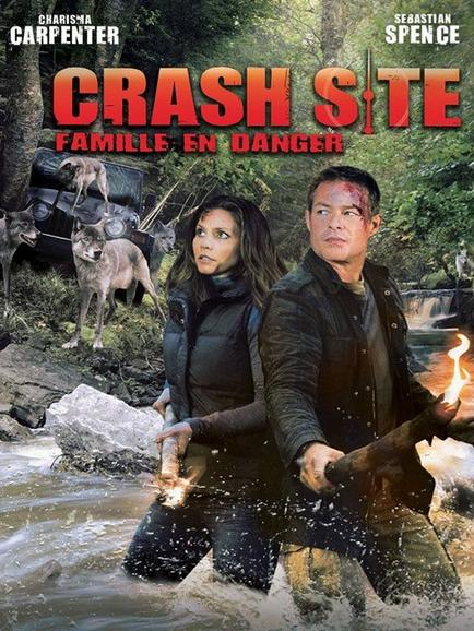 Crash Site TRUEFRENCH DVDRIP 2011