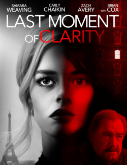 Last Moment Of Clarity FRENCH DVDRIP 2020